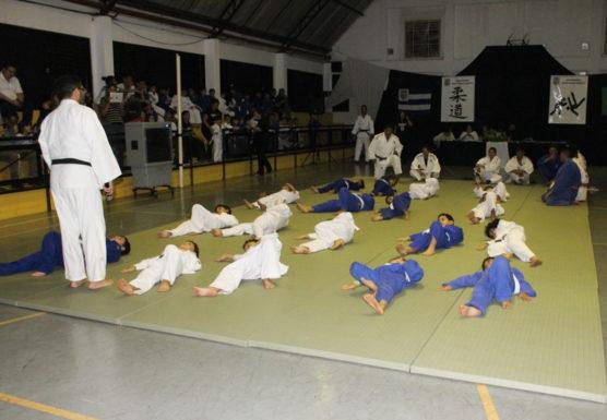 esmg-judo-2017-7-556x385.jpg